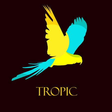 Stylized parrot. Vector tropical bird.