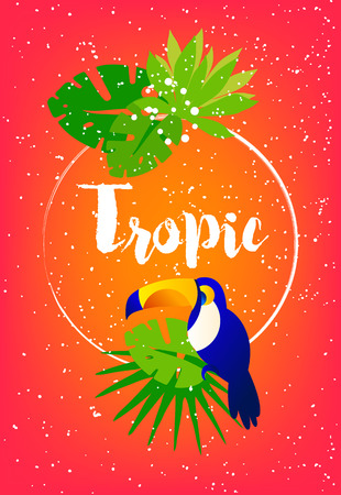 Tropical summer card with palm leaves, toucan, frame and text on red background. Flat design. Vector card.