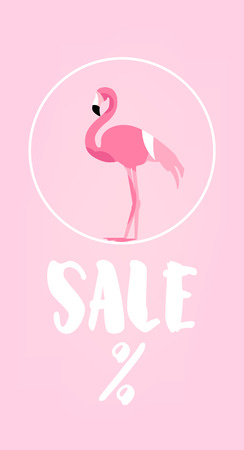 Summer sale card with flamingo and text on pink background. Flat design. Vector banner. Illustration