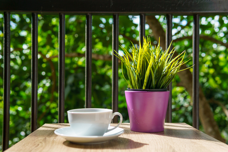 pensador: espresso coffee in white cup on the wooden table with small mock up plant at terrace or balcony of hotel with garden view. coffee, relax, holiday, feel good or thinker concept.