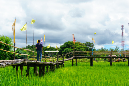 """mooie landelijke bamboe brug over de rijst rijstvelden met Aziatische mannelijke en blauwe lucht en pluizige wolk in zonnige dag op het platteland. lampang, thailand. Bridge naam """"Sapan Boon Wat Pa That San Don"""""""
