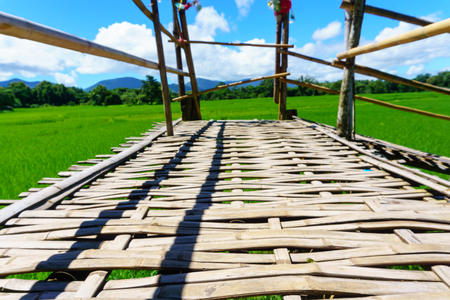 close up of Rural bamboo bridge path to rice paddy fields with blue sky and fluffy cloud in sunny day at countryside. lampang, northern part of thailand. Bridge name Sapan Boon Wat Pa That San Don
