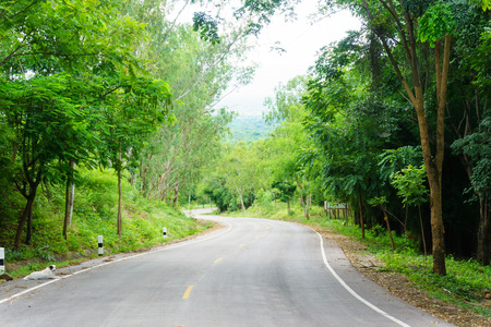 Landscape of empty asphalt curved road through the green forest with line for direction on the way. country road in thailand. road trip, route to success, travel or endeavor abstract concept.