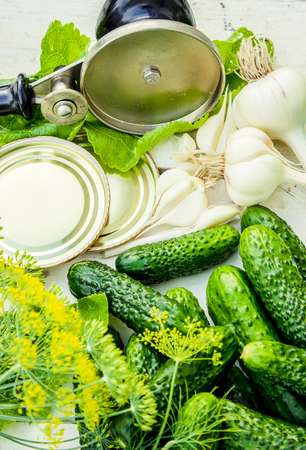 preservation of fresh house cucumbers. Selective focus. nature Stock Photo