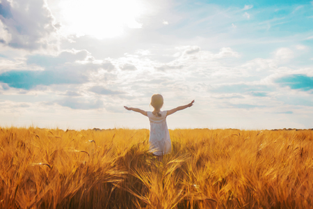 child in a wheat field. selective focus. nature Stock Photo
