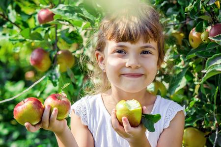 Child with an apple. Selective focus. Garden Food 免版税图像