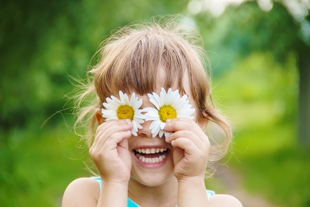 the girl is holding chamomile flowers in her hands. Selective focus. nature. Stock Photo