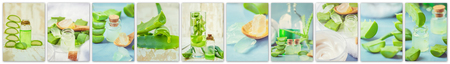 Collage Aloe Vera extract in a small bottle and pieces on the table. Imagens