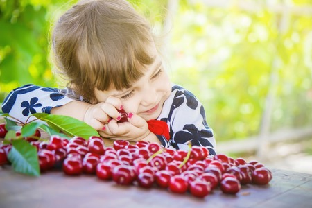 The child is picking cherries in the garden. Selective focus. Stock Photo