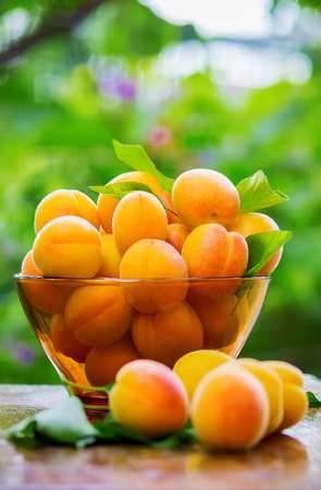 Child with apricots. Selective focus. food and drink.