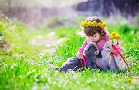 A child and a cat. Selective focus. Imagens