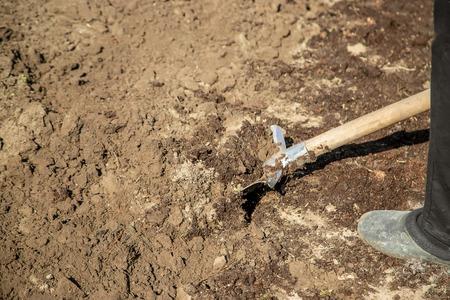 Dig a garden shovel. Gardening. Selective focus nature Reklamní fotografie