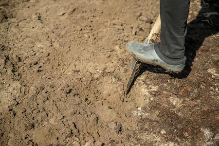 Grabe eine Gartenschaufel. Gartenarbeit. Selektiver Fokus Natur Standard-Bild