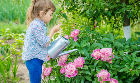 child watering flowers in the garden. Selective focus.