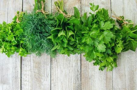 Frisches hausgemachtes Grün aus dem Garten. Selektiver Fokus. Natur.