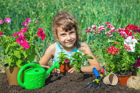 A little girl is planting flowers. The young gardener. Selective focus. nature.