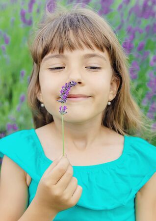 A child in a flowering field of lavender. Selective focus.