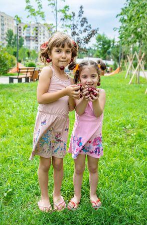 Children eat cherries in the summer. Selective focus.