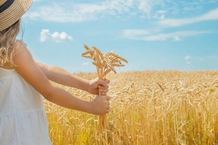 A child in a wheat field. Selective focus. nature.