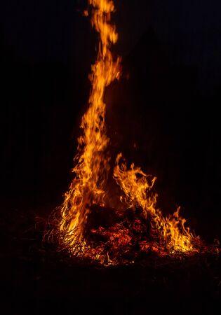 grand feu de joie, feu d'herbe brûle. Mise au point sélective. la nature.
