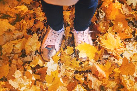 Children in the park with autumn leaves on shoes. Selective focus. nature.