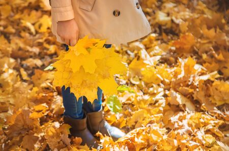 Children in the park with autumn leaves. Selective focus. nature.