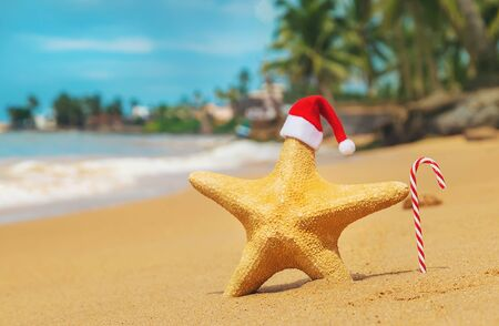 Starfish Santa Claus on the beach. Selective focus. Nature. Stock Photo