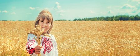A child in a field of wheat in an embroidered shirt. Ukrainian. Selective focus.