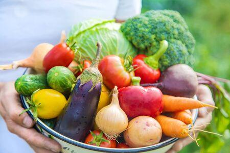 手に手に自家製の野菜を持つ男の農家。選択的フォーカス。自然。