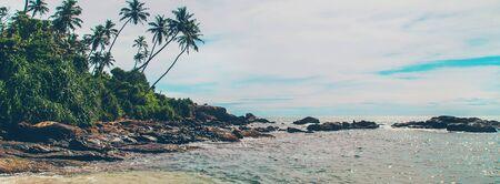 Ocean Sri Lanka. Nature and palm trees. Selective focus. Nature.