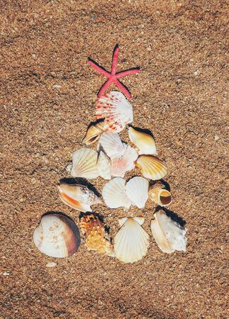 Christmas tree made of shells in the sand. Selective focus. nature. Stock Photo