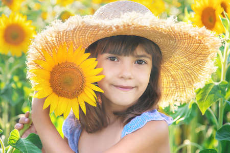 Child in a field of blooming sunflowers. Selective focus. nature.