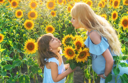 A pregnant woman and a child in a field of sunflowers. Selective focus. 스톡 콘텐츠 - 152296266