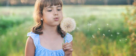 child girl blowing a dandelion. Selective focus.