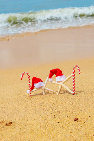 Starfish Santa Claus on the beach. Selective focus. Nature.