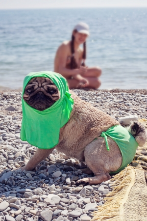 the bather:  sea bather Stock Photo