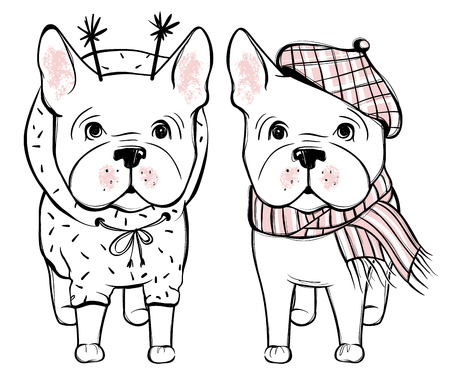 Cute vector dog in winter clothes. Fashion French bulldog puppy.