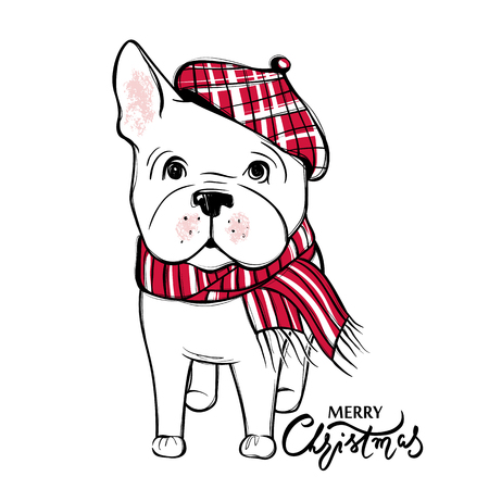Cute vector dog in winter clothes. Fashion French bulldog puppy. Stylish animals. Clothing for pets. Cartoon illustration in sketch style. Print design.