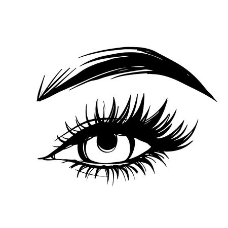 Vector Dibujado a mano hermoso ojo femenino con cejas y pestañas largas y negras.