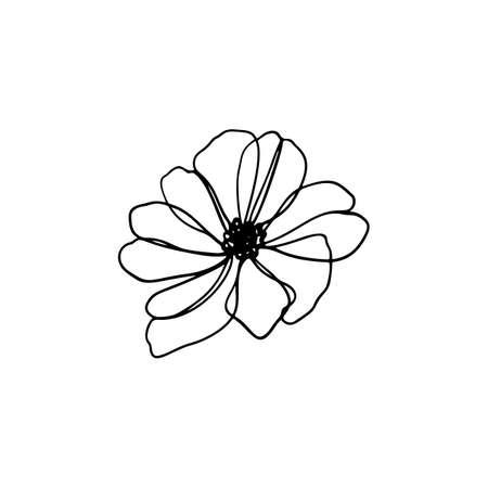 Single Line art vector flower illustration. Continuous contour floral design. Outline drawing