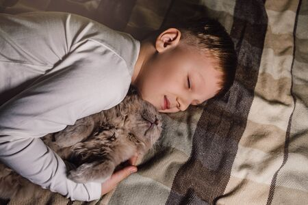 Boy and cat. Scottish fold cat in the arms of a boy. The concept of a pet in family education and a loving home. Flat Lay.