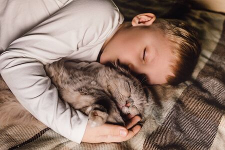 Boy and cat. Scottish fold cat in the arms of a boy. The concept of a pet in family education and a loving home. Horizontal.