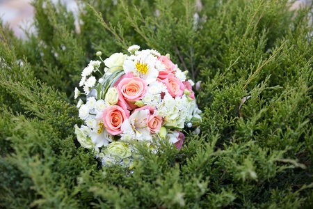 pink and white wedding bouquet in green grass photo