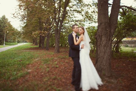 portrait of the bride and groom in wedding day