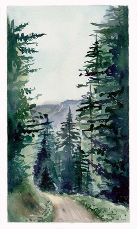 feuille arbre: forêt de conifères et les montagnes