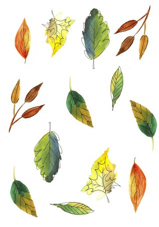 Autumn leaves set isolated on white background. Watercolor hand drawn illustration