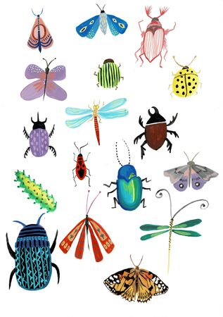 Set of insects watercolor illustration isolated on white background for design