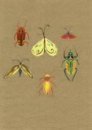 A set of bright insects, illustration. Craft paper