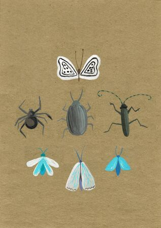 Set of insect stickers. Minimalist beetles and butterflies with flowers and patterns. Stockfoto