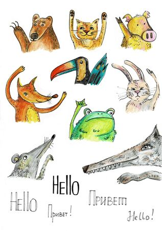 Animals in cartoon style illustration. Bear fox frog hare wolf toucan and cat.
